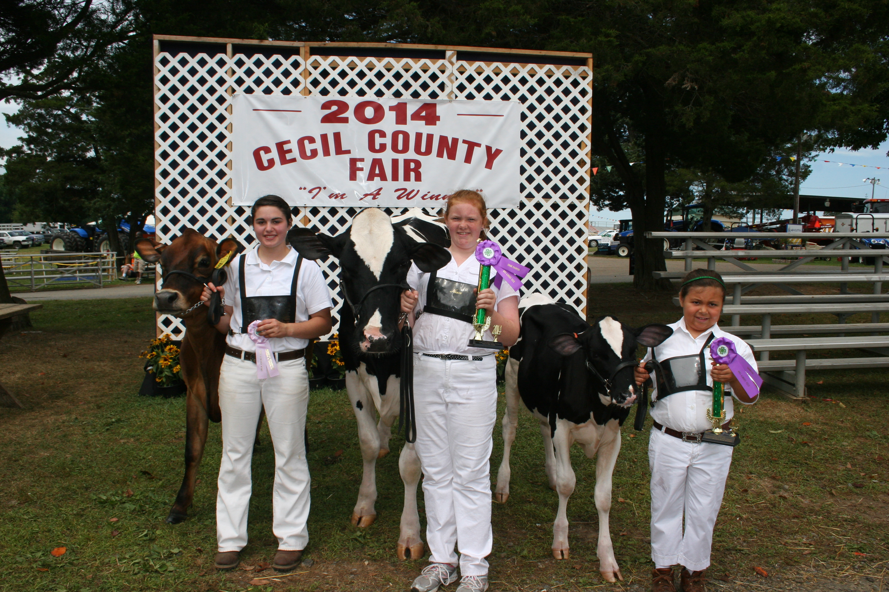 county fair carnival 4h tractor pulls and more cecil county fair. Cars Review. Best American Auto & Cars Review