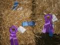 Cecil County Fair 2014 Day 3 243.JPG