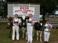 Cecil County Fair 2014 Day 7 034.JPG