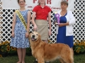 Cecil County Fair 2014 Day 9 025.JPG